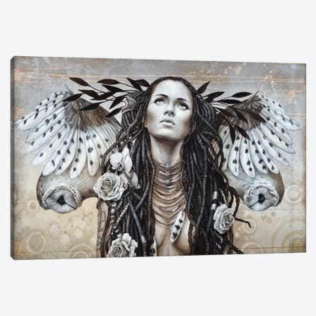Plumes de Nuage (Cloud Of Feathers) Canvas Print #SOP23} by Sophie Wilkins Canvas Art Print