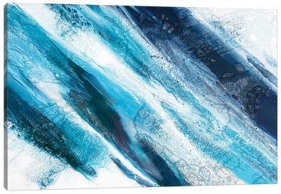 Arctic Ice Canvas Art Print