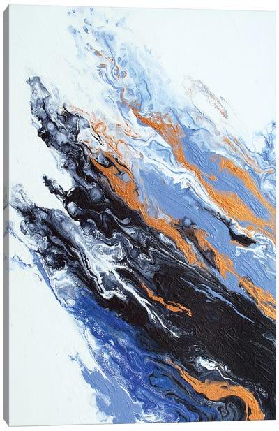 Composure Canvas Art Print