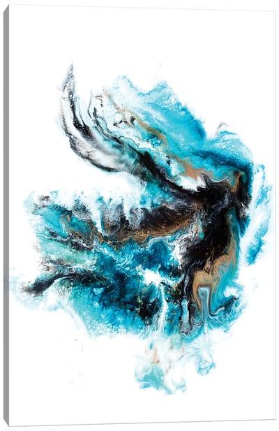 Acropora Canvas Art Print