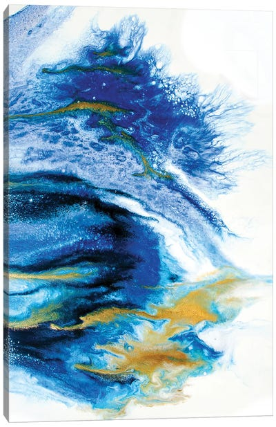 Lapis Canvas Art Print