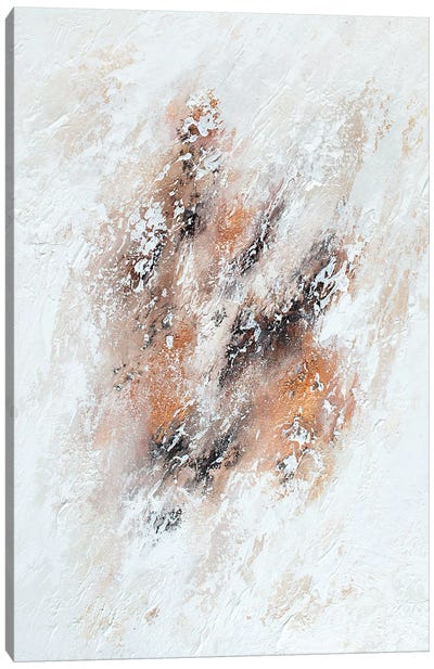Snow Storm Canvas Art Print