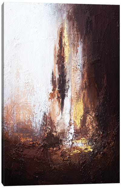 Light Of The Cave Canvas Art Print
