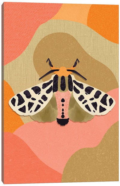 Moth Canvas Art Print