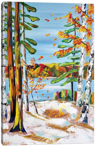 Early Snow in Muskoka Canvas Art Print