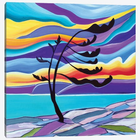 Lone Pine Canvas Print #SPE18} by Jill Sapiente Canvas Wall Art