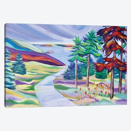 Skyline Trail Canvas Print #SPE27} by Jill Sapiente Canvas Artwork