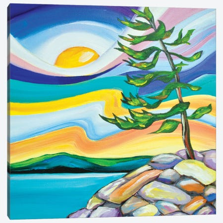 Sunny Side Up Canvas Print #SPE28} by Jill Sapiente Art Print