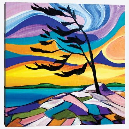 Sweet Sunrise Canvas Print #SPE34} by Jill Sapiente Canvas Print