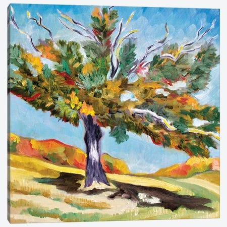 Big Oak Tree Canvas Print #SPE4} by Jill Sapiente Canvas Wall Art