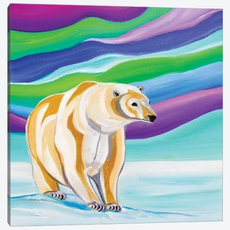 Arctic Chill Canvas Print #SPE5} by Jill Sapiente Canvas Art
