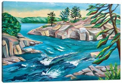 Burleigh Falls Canvas Art Print