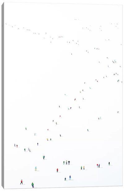 Frozen Planet XLIII Canvas Art Print