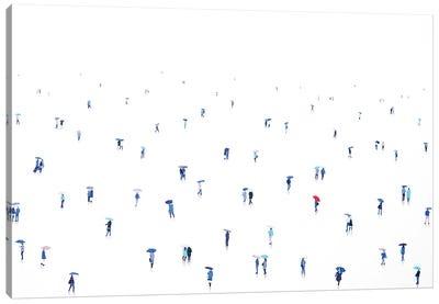Sky Fall XXXIV Canvas Art Print