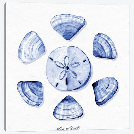 Shell Collection VII Canvas Print #SPN188} by Stephanie Ryan Canvas Wall Art