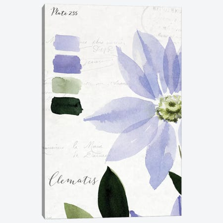 Clematis Canvas Print #SPN48} by Stephanie Ryan Canvas Wall Art