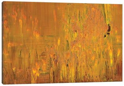 Desert Eagle Canvas Art Print