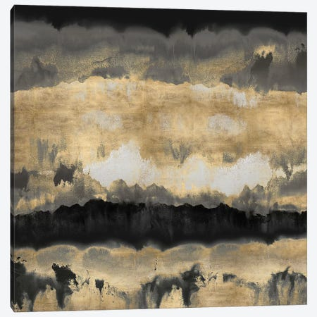 Spectrum In Gold & Black Canvas Print #SPR28} by Rachel Springer Canvas Artwork