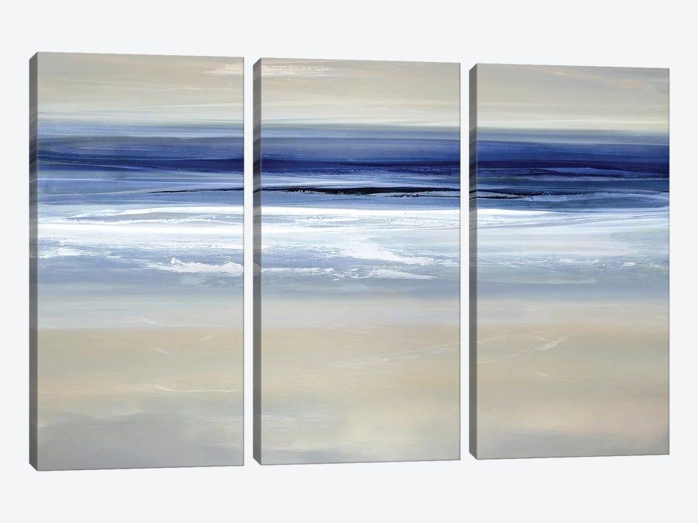 Buoyant I by Rachel Springer 3-piece Canvas Wall Art