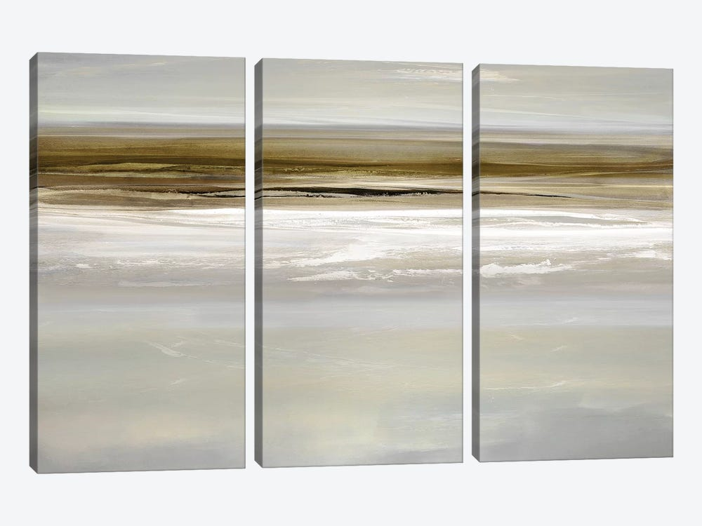 Buoyant II by Rachel Springer 3-piece Canvas Art Print
