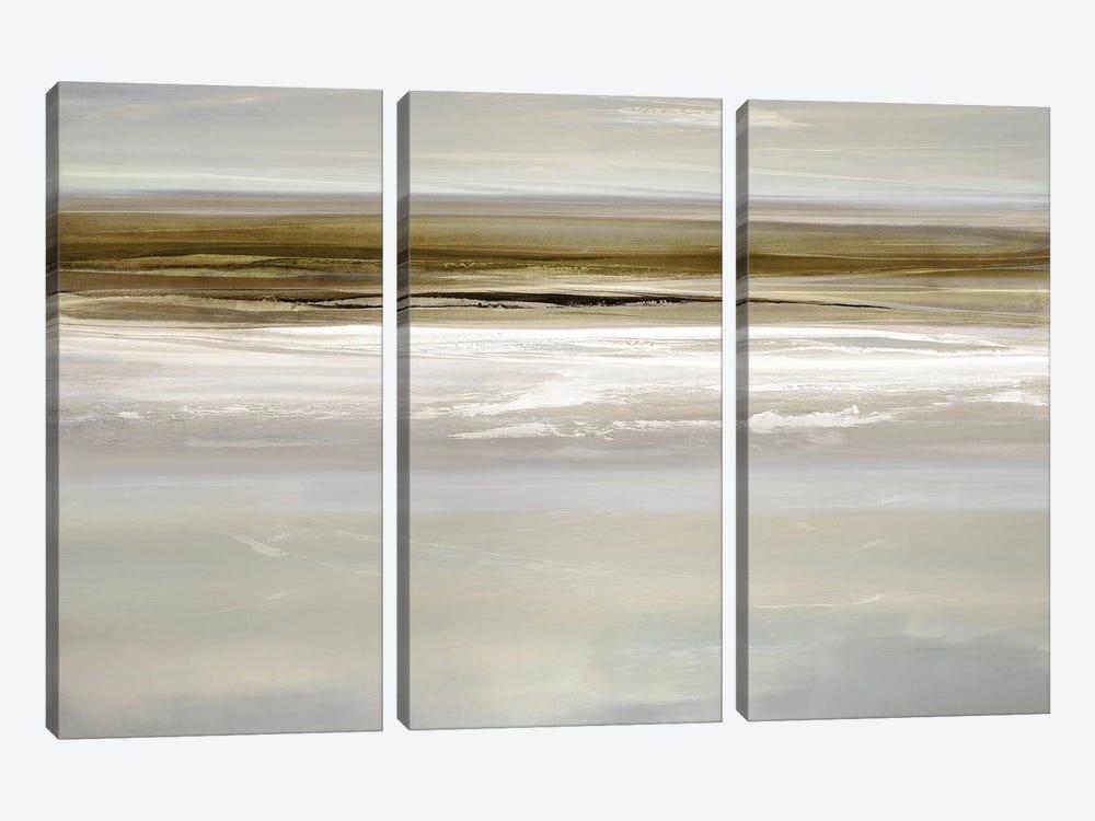 Buoyant II by Rachel Springer 3-piece Canvas Art Print