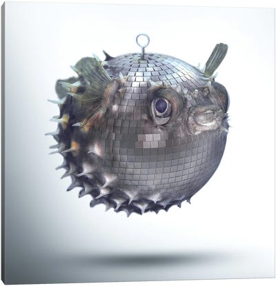Fabuleon: Mirrorball Fish Canvas Art Print