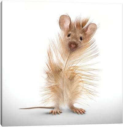 Fabuleon: Feather Mouse Canvas Art Print