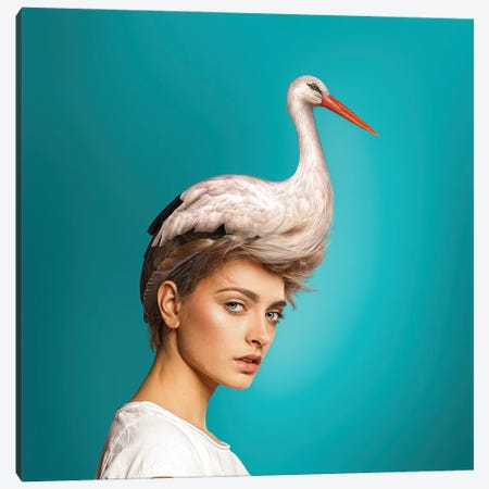 Hairstyle: Stork Canvas Print #SPS20} by spielsinn design Art Print