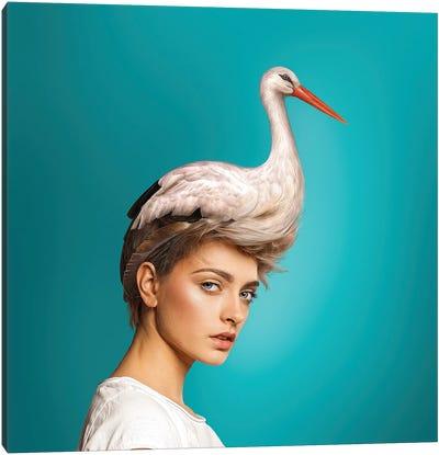 Hairstyle: Stork Canvas Art Print
