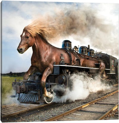Trainhorse Canvas Art Print