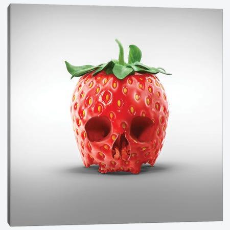 Strawberry Skull Canvas Print #SPS8} by spielsinn design Canvas Artwork