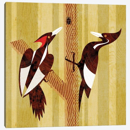 Ivory Billed Woodpeckers Canvas Print #SPT56} by Scott Partridge Canvas Art