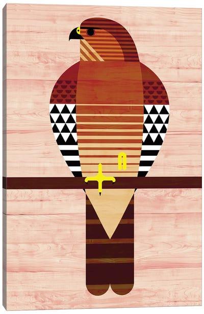 Red Shouldered Hawk Canvas Art Print