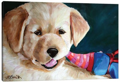 Pup And Toy Canvas Art Print