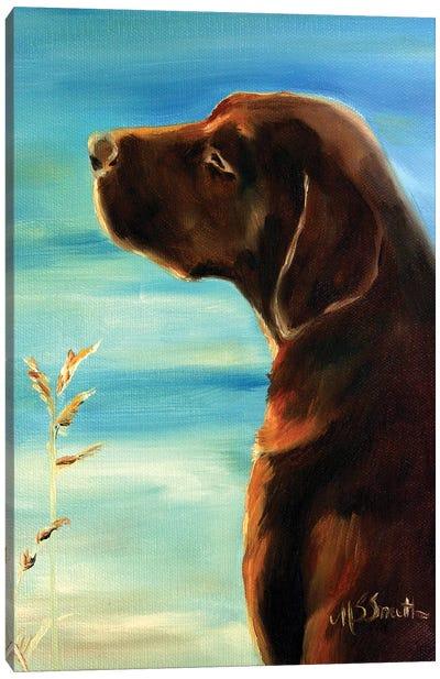 Sunkissed Canvas Art Print