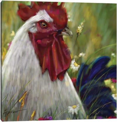 Cock A Doodle Doo Canvas Art Print