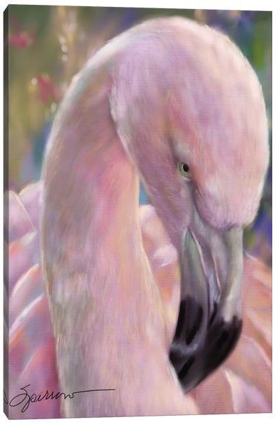 Mingo The Flamingo Canvas Art Print