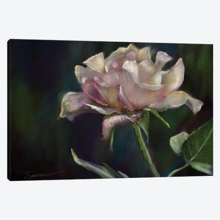 Morning Bloom Canvas Print #SPW276} by Mary Sparrow Canvas Art