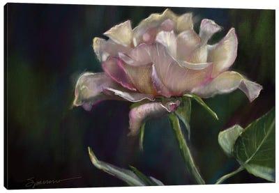 Morning Bloom Canvas Art Print