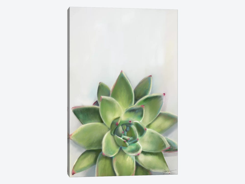 Succulent Green by Mary Sparrow 1-piece Art Print