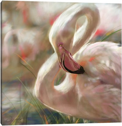 Sunset Flamingo Canvas Art Print