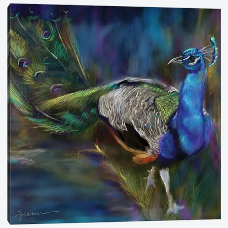 Peacock Blues Canvas Print #SPW291} by Mary Sparrow Canvas Art Print