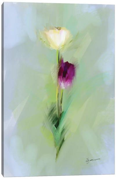 From The Fairy Garden II Canvas Art Print