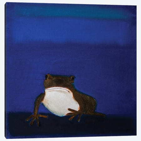 Frog Canvas Print #SQU11} by Andrew Squire Art Print