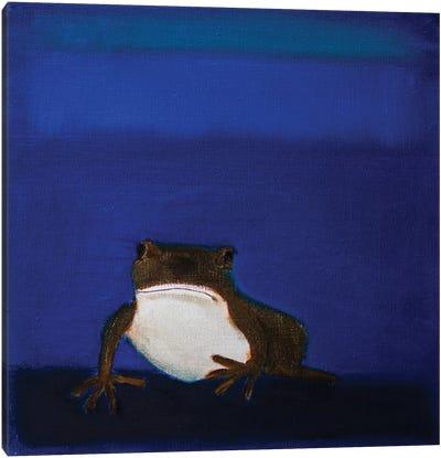 Frog Canvas Print #SQU11