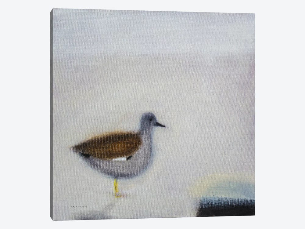 Gadwall by Andrew Squire 1-piece Canvas Artwork