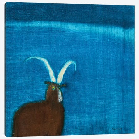 Goat Canvas Print #SQU13} by Andrew Squire Canvas Print