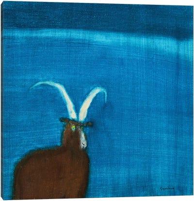 Goat Canvas Art Print