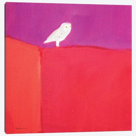 Owl Canvas Print #SQU16} by Andrew Squire Canvas Wall Art