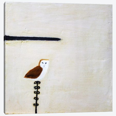 Owl On A Post Canvas Print #SQU17} by Andrew Squire Canvas Artwork
